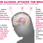 Things you DON'T want to know about ALCOHOL