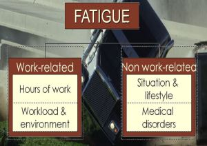 Healthy trucker. Fatigue