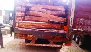 Smuggled Wood